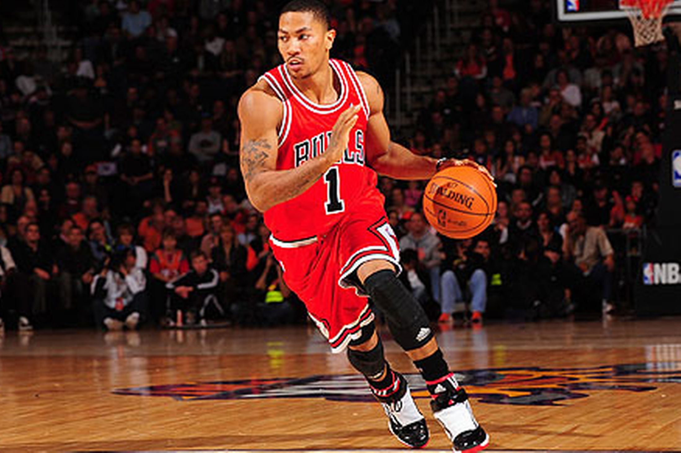 Buy Basketball D Rose Off61 Discounted